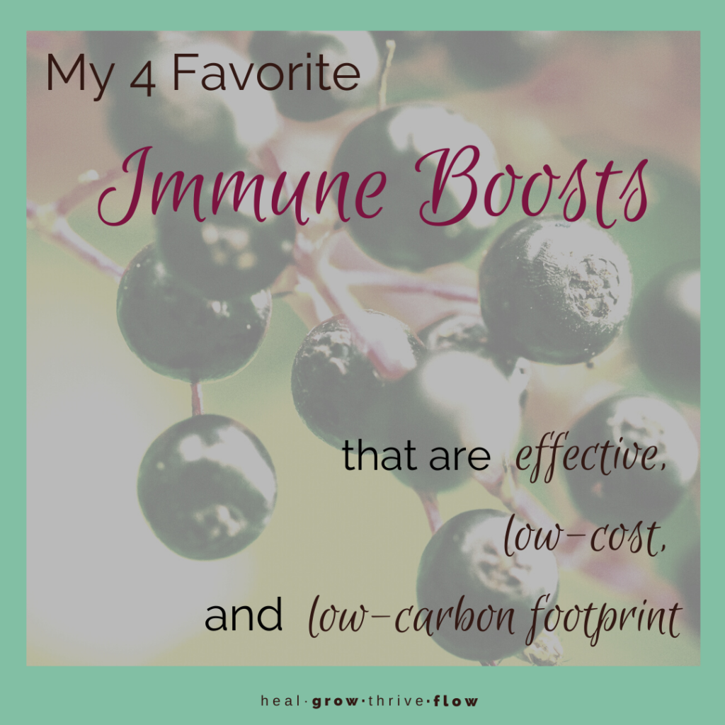 Top 4 Immune Boosts Effective Low Cost Low Carbon Footprint by Leilani Navar at healgrowthriveflow.com