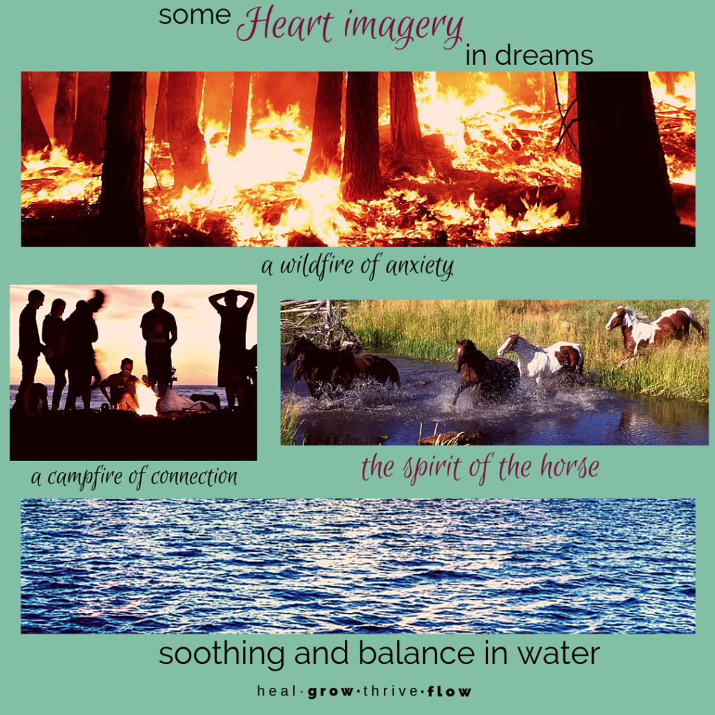Heart imagery in dreams Five Elements dream interpretation Fire by Leilani Navar at thedreamersden.org