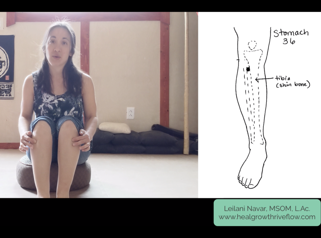 Self Acupressure with Leilani Navar for supporting the lung large intestine spleen and stomach networks breathing digestion immune system healgrowthriveflow.com
